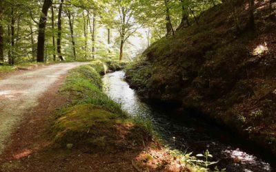 Aux sources du Canal du Midi